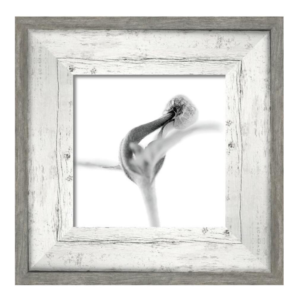 consemillas framed.png