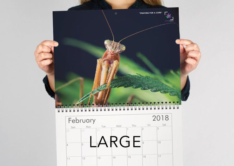 large-calendar-preview.jpg