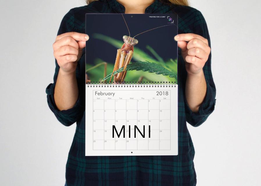 mini-calendar-preview.jpg