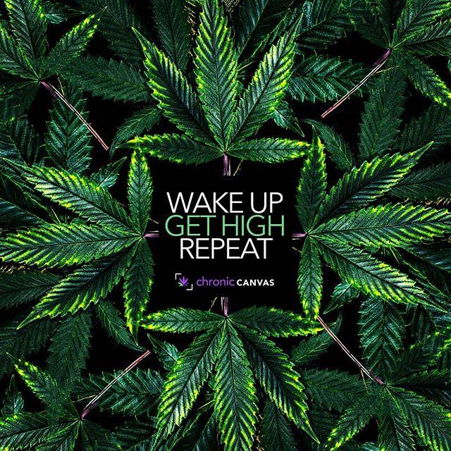 Sunday vibes #wakeup #gethigh #repeat 🌱💨🔄 . . #ChronicCanvas #plantsoverpills #killthestigma #cannabisart #cannabisismedicine #highlife  #highart #hightimes #staylifted #kush #fueledbythc #freetheweed #dank #weedstagram #highlife #stonernation  #smokeweed #420life #cannabisarmy #420photography #wegetzhigh #weedclothes  #wakenbake