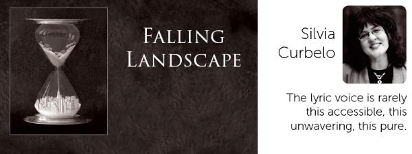 Falling Landscape