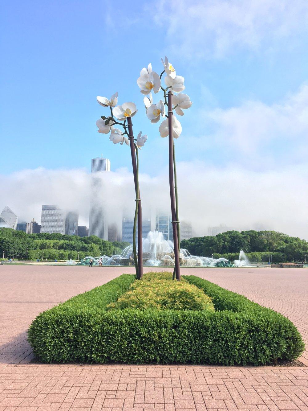 Chicago Park District [2015-18]