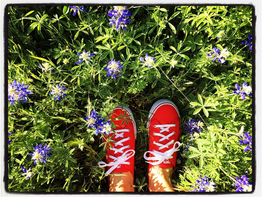 redshoesbluebonnets