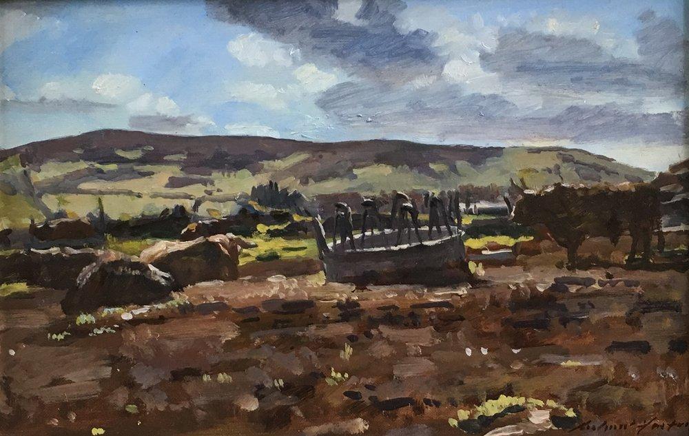 Cows near Huntly, oil, 8 x 10.jpg