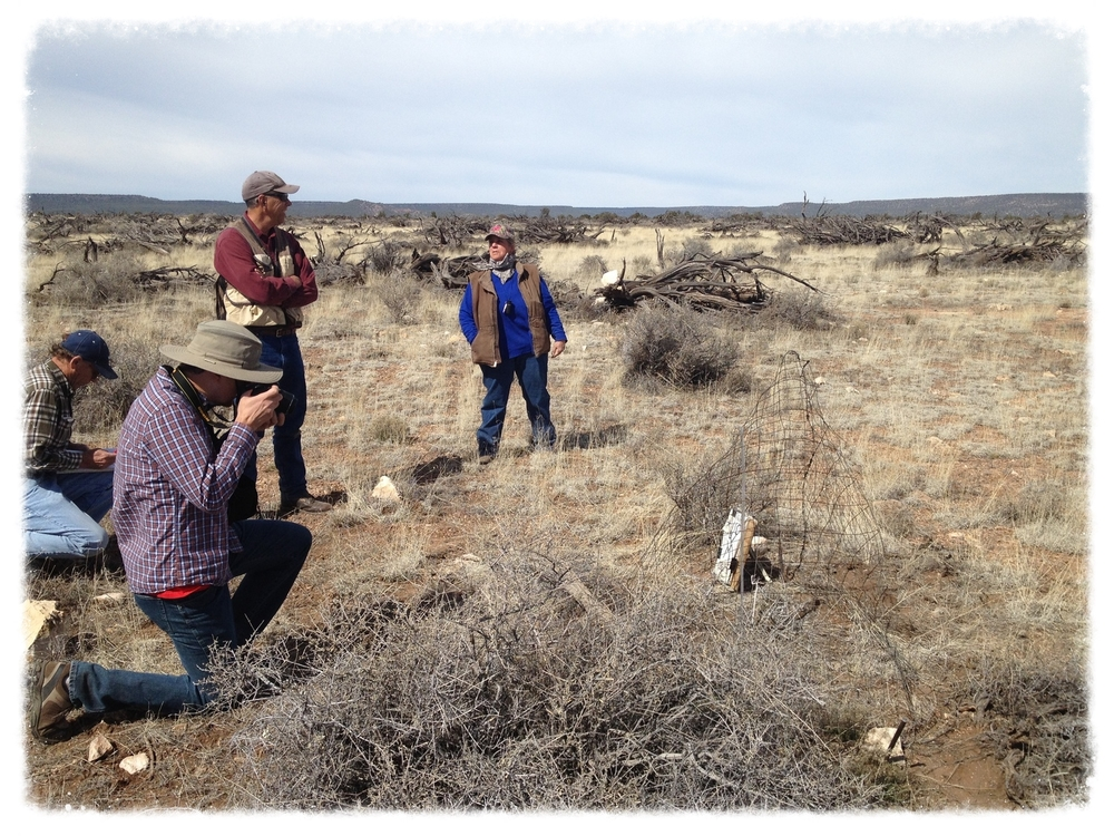 D. Humphrey & W. Sommers (ASLD), S. Cassady (AZGFD), and K. Metzger (Flying M) on the first FRSG monitoring of 2015  (credit: Jeremy D. Krones)