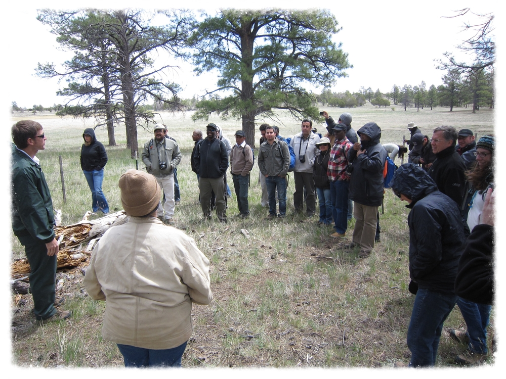 Spending time in the field with an International Foresters' Seminar, 2007 (Diablo Trust Archives)