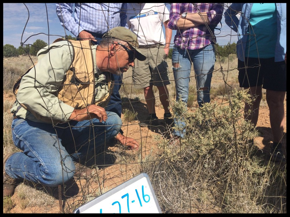 Steve Cassady leads the discussion on what can be found in this cage on Bar T Bar Ranch