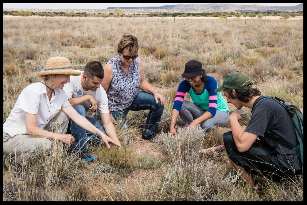 Judy Prosser with NAU students and their professor on a recent soil monitoring trip to the Bar T Bar Ranch.