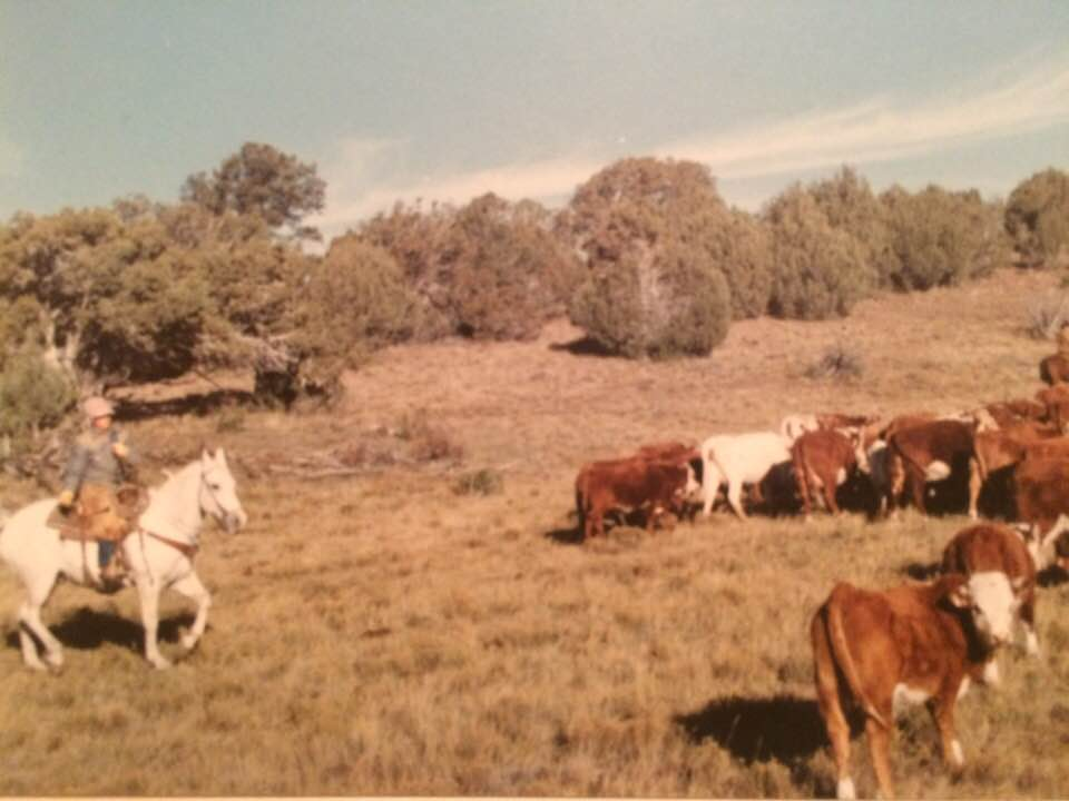 Kit Metzger moving a herd on the Flying M Ranch (Flying M archives)