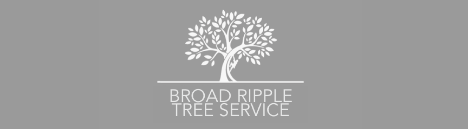Broad Ripple Tree Service - Indianapolis, IN Arborist Tree Care Professionals
