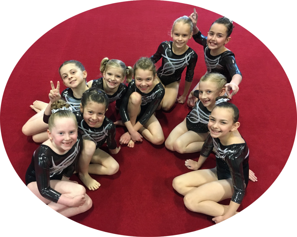 Level 3 Metro Girls Team!