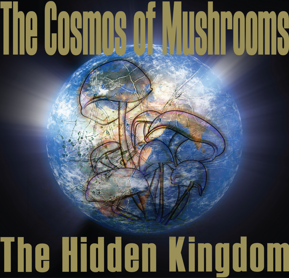 The Cosmos of Mycelium-The Hidden Kingdom-01.png.Still003.png
