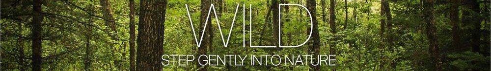 Banner WILD-01.jpg
