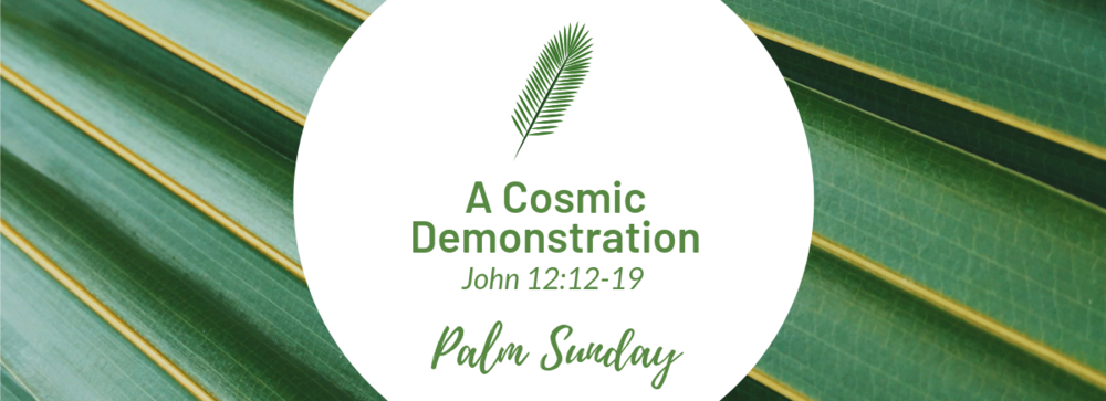 Palm Sunday Web Banner.png