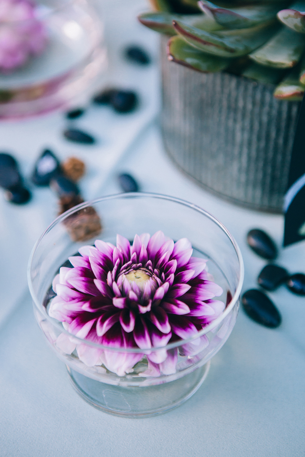 I really wished I could have combined flowers with the succulents. But these dahlias would have had a total meltdown before the guests arrived to the reception. The only way I could use them was to decapitate the blooms and float them in clear bowls of water.