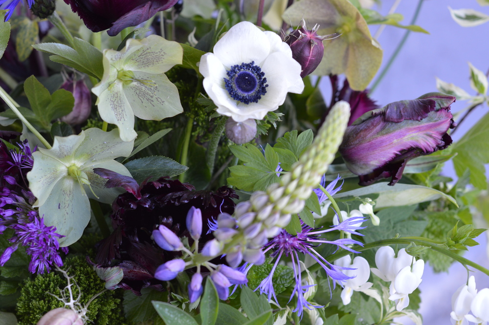 The black-centered anemone is my favorite woodland inspired bloom to use. The white pops against the rich green foliage and the purple- navy center reflects the purple hue of the other flowers.