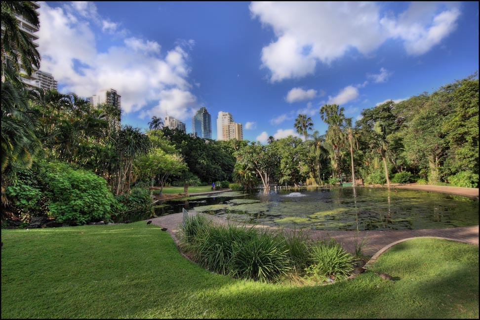 """Brisbane Botanical Garden"" by Nam Nguyen is licensed under CC BY 2.0"