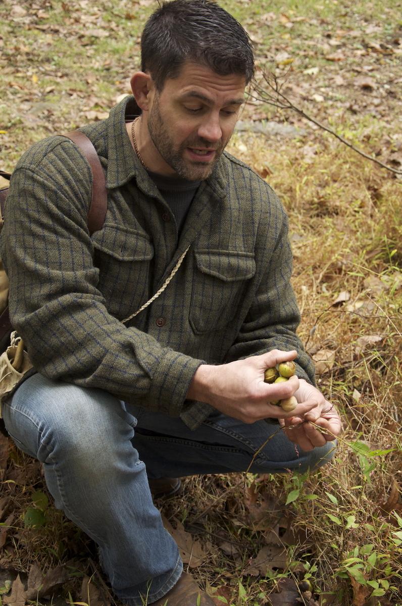 Bill foraging