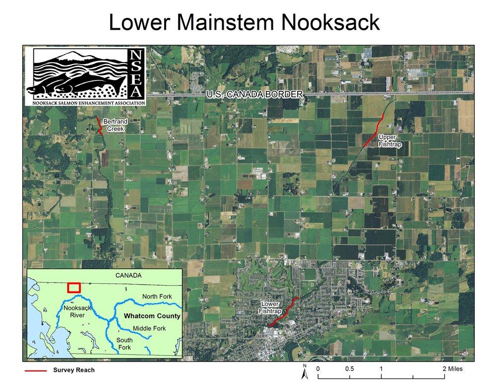 Lower_Mainstem.jpg