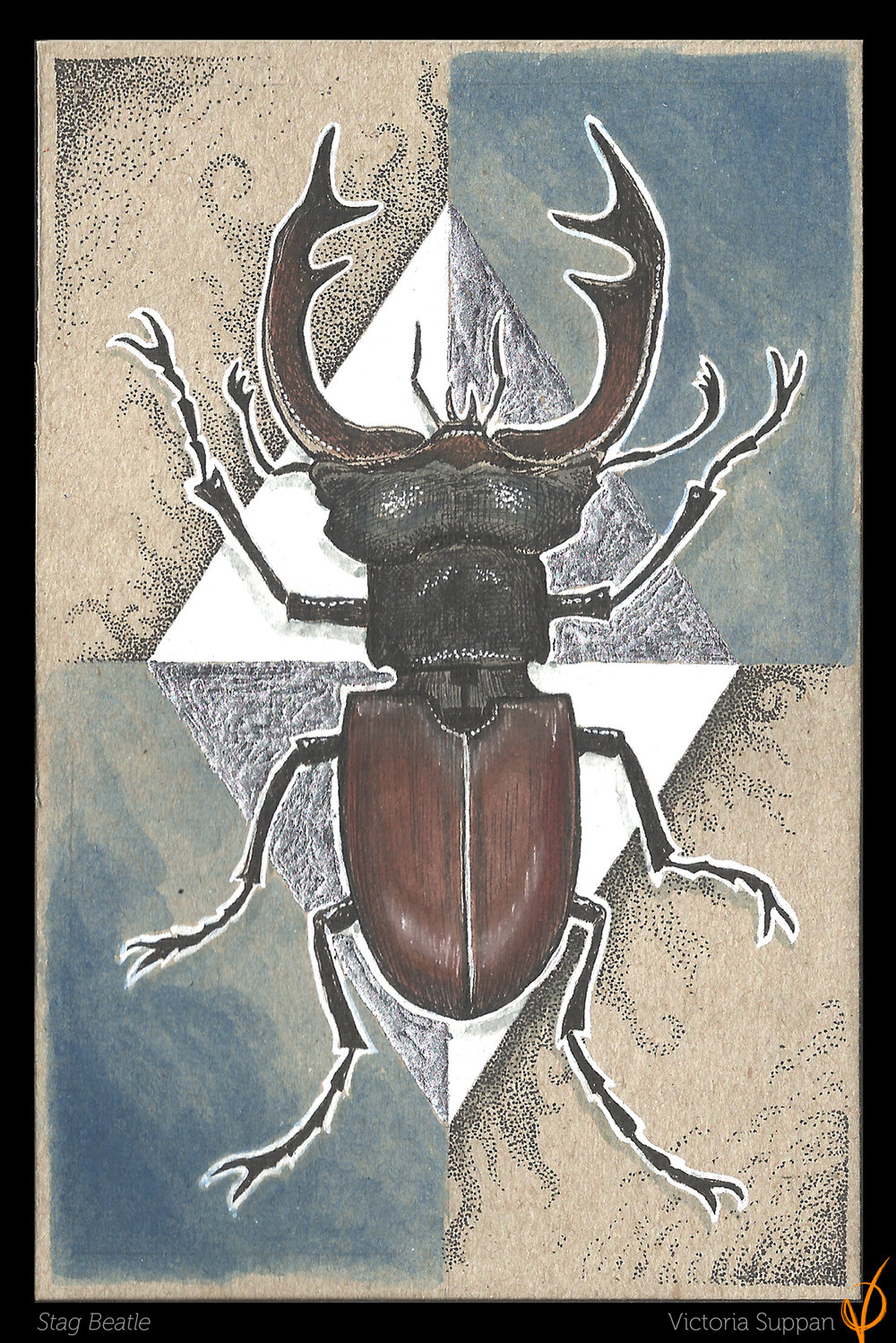 Stag Beatle Ink, watercolor and metal leaf on paper - 2018