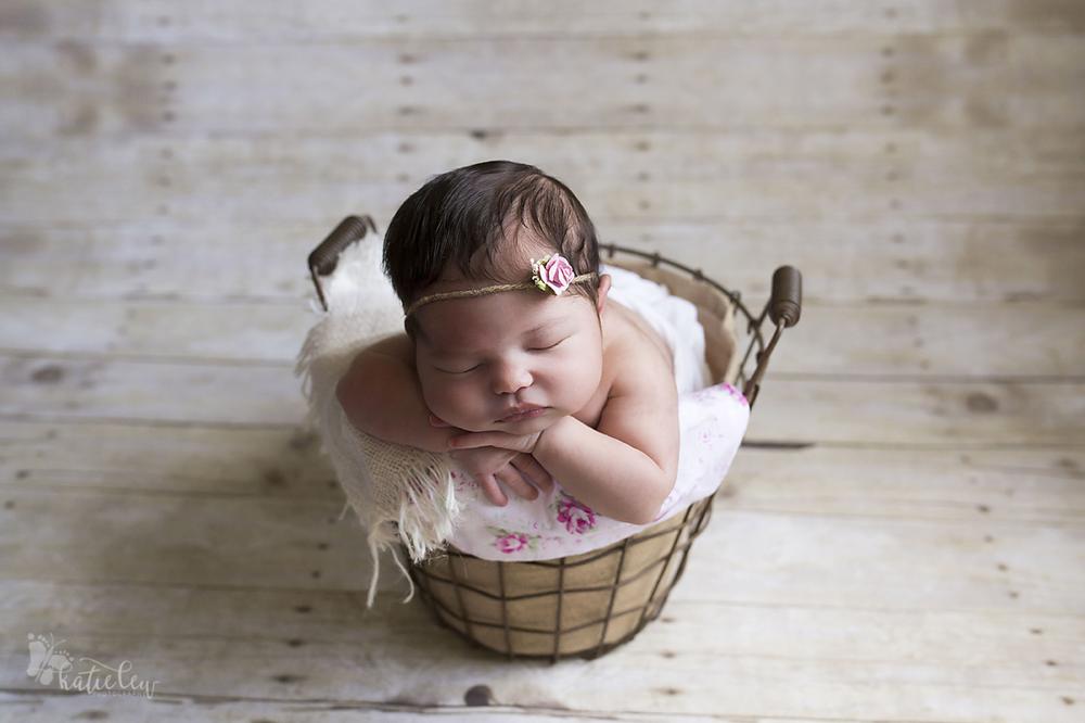 baby in a basket newborn photographer