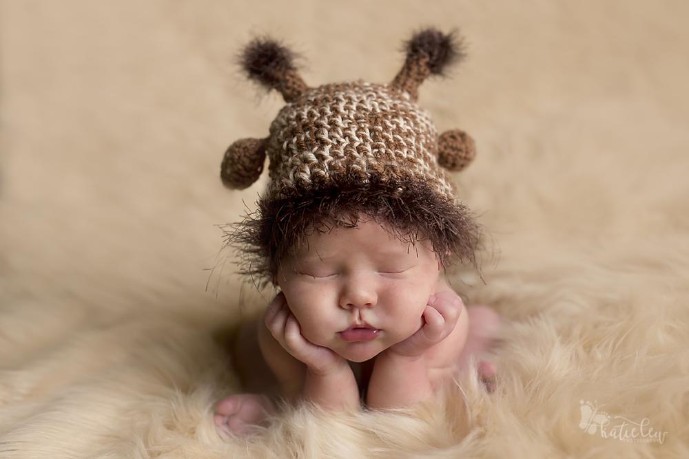 giraffe newborn