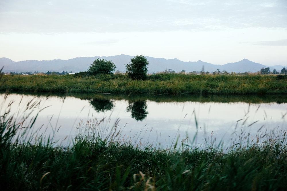 SINGLE-WaterLandscape-small.jpg