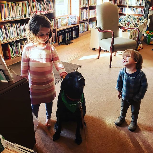 Did you miss Jazz last week? She'll be back on Tuesday, November 6 @ 3pm!  #varnummemoriallibrary #therapydogsofinstagram #therapydog #therapydogs #jazz #therapydogsofvermont #jeffersonvillevt #vermont #vermonting