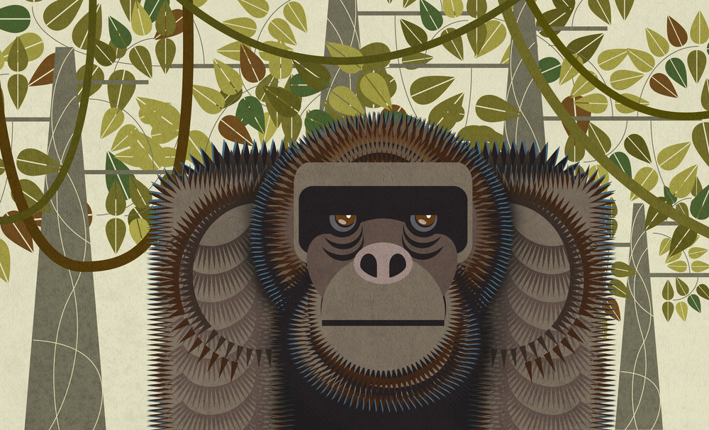 11_Gorilla.jpg