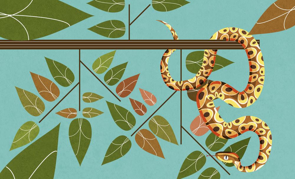 13_snake.jpg