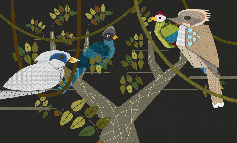 17_More_Birds.jpg