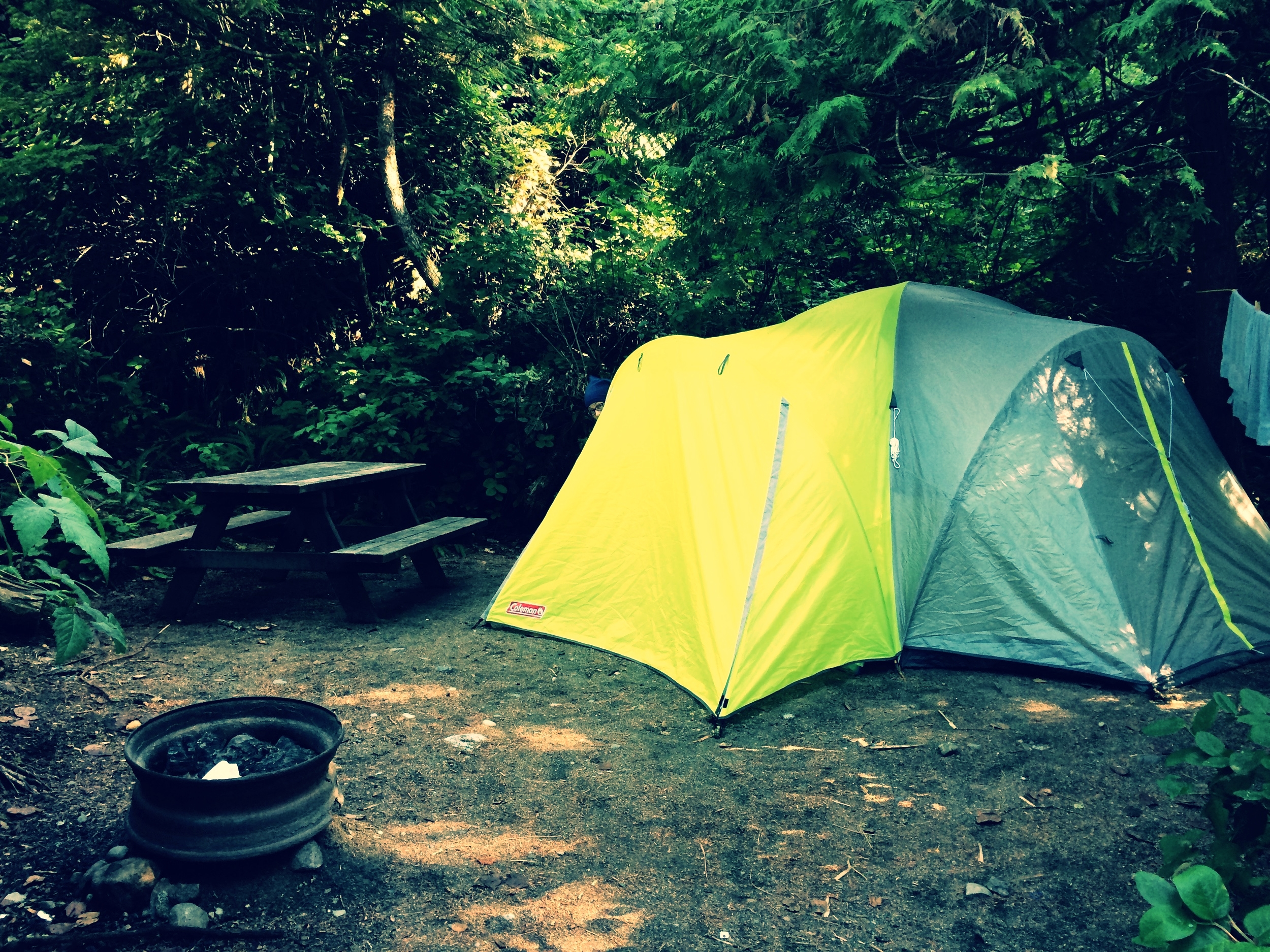 The Bear and the Tent Illusions of Safety : tent safety - memphite.com
