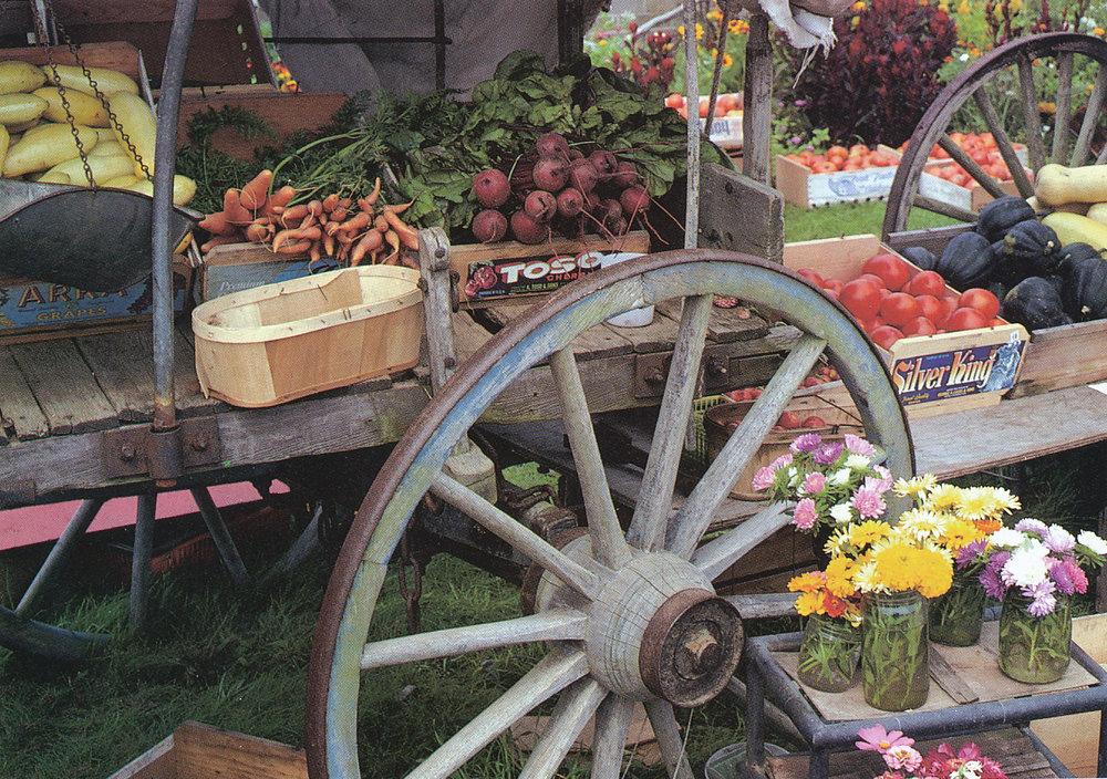Marian Morash's Victory Garden Recipes