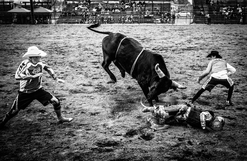Montana-Junior-Rodeo-Bozeman-Photographer-11.JPG