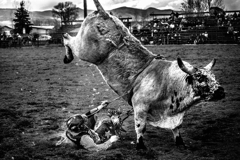 Montana-Junior-Rodeo-Bozeman-Photographer-12.JPG