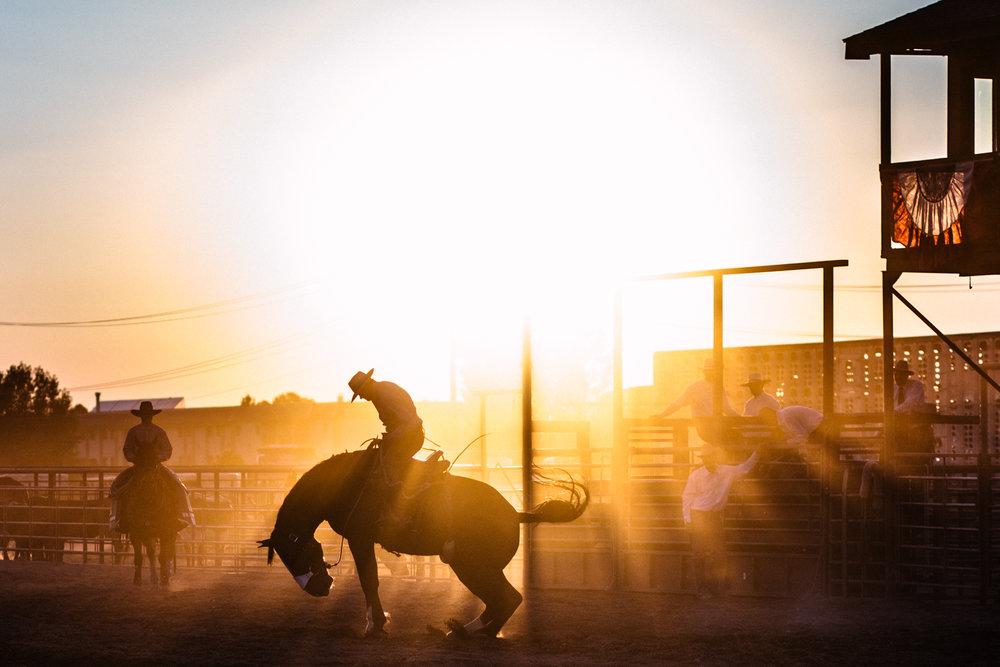 montana-photojournalist.jpg