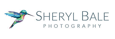 Sheryl Bale Photography