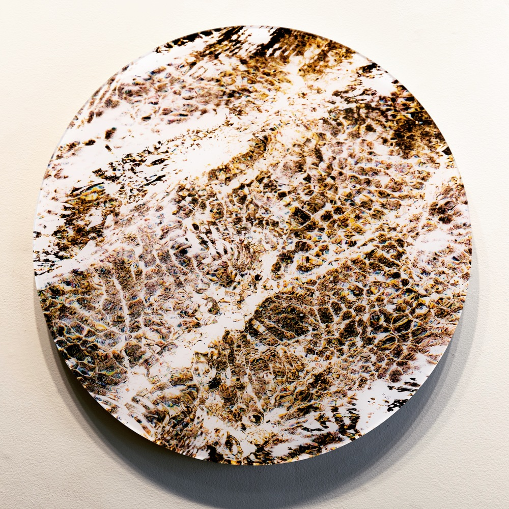 "Atlantic Study #6, 24"" diameter C-Print"