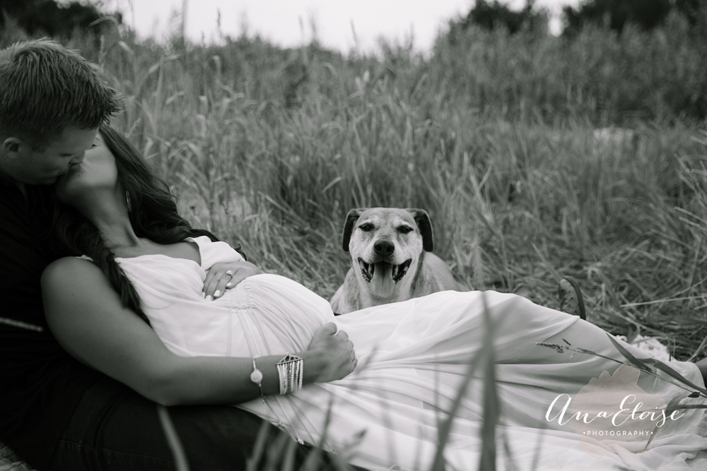 ana eloise photography maternity photography dallas fort worth