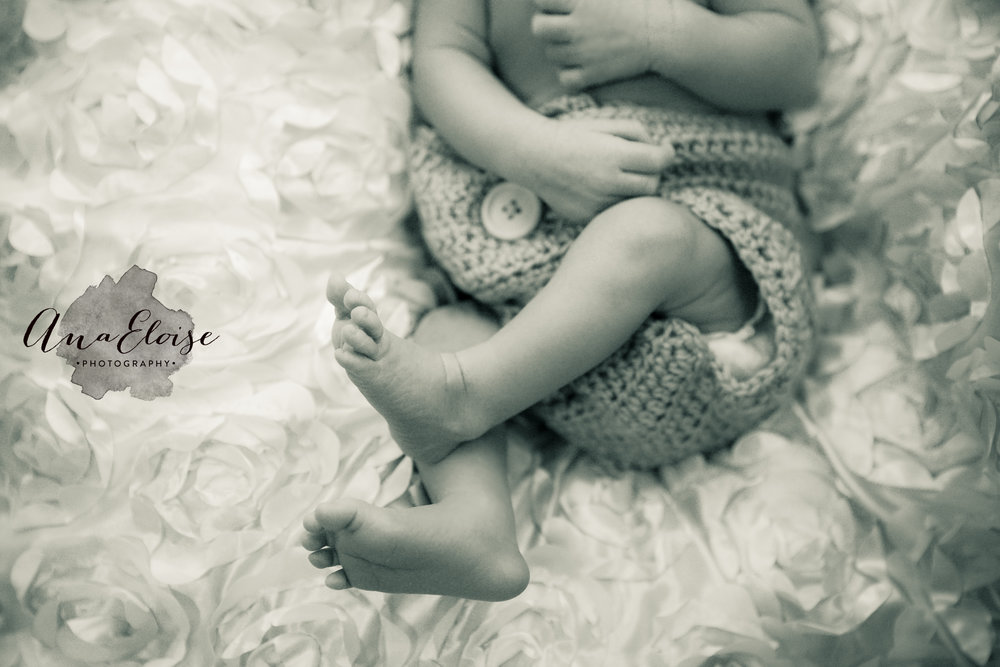 dallas fort worth newborn photography ana eloise photography