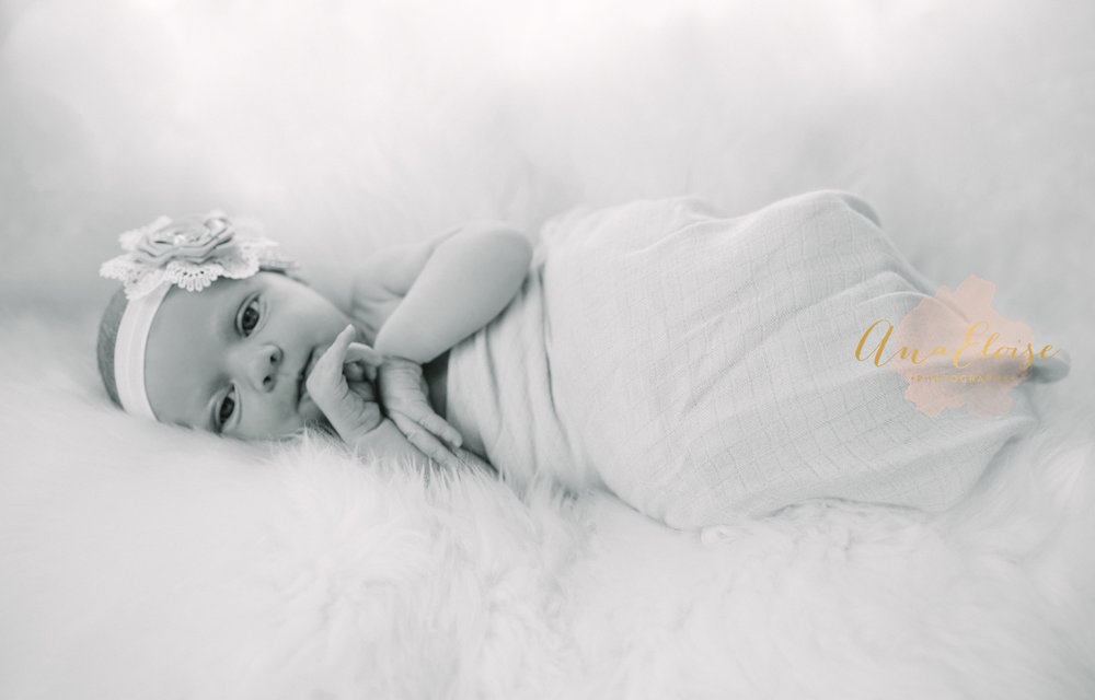ana eloise photography newborns dallas fort worth