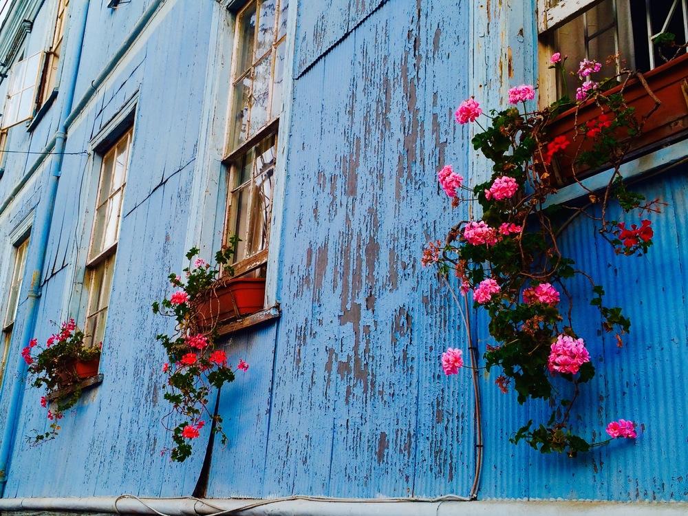 Street facade, Valparaiso Chile - 3 Days*