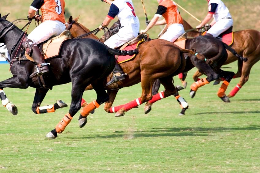 Polo match, Delhi India -📸 unknown