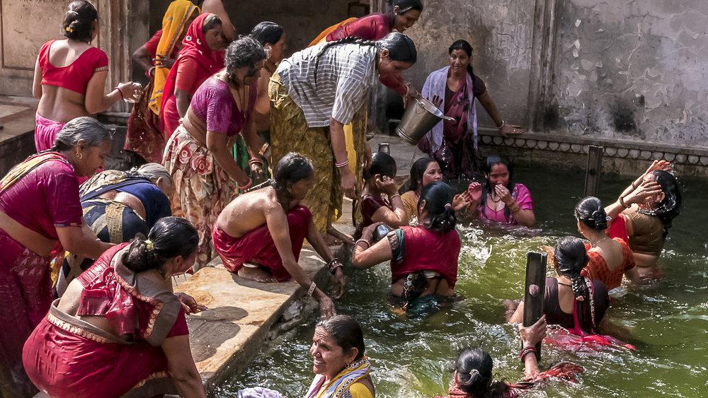 The Monkey Temple, Jaipur, Rajasthan, India, 3 Days* - Barbara Huber