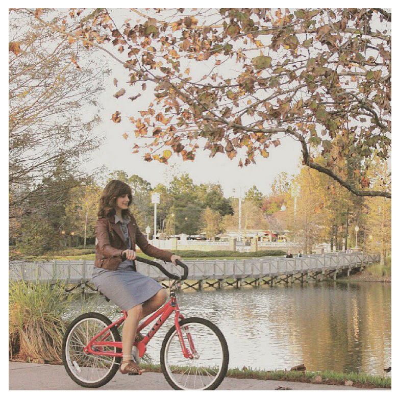 m&h bike.jpg