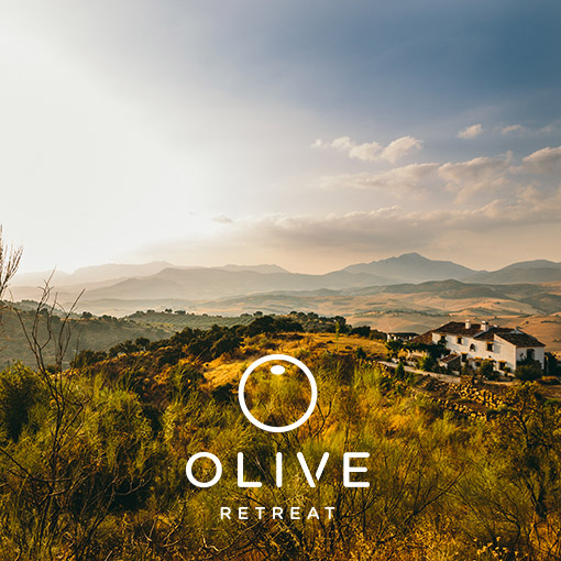 Olive Retreat in Spain Andalucia Vegan Meditation Ayurveda