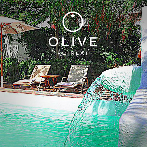 olive-retreat-spain-detox-44.jpg