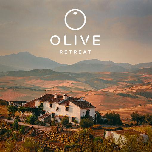 Olive Retreat 2015 Meditation Ayurveda Yoga Detox Mindful Vegan