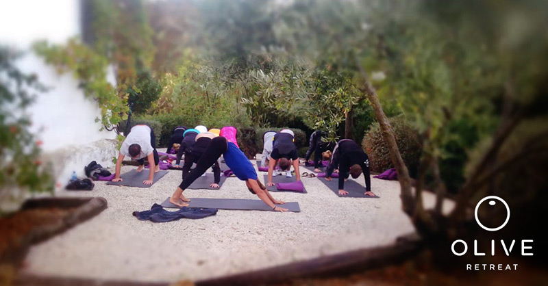 Olive Retreat Yoga Retreat Spain Meditation Detox