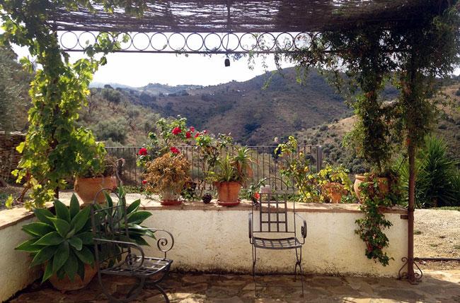 Olive Retreat Spain Meditation Class Detox Vegan Cleanse